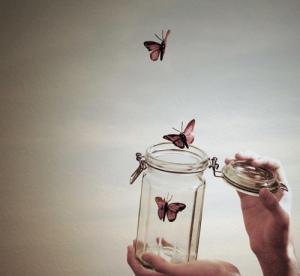 butterflies-cute-hipster-indie-Favim_com-720610